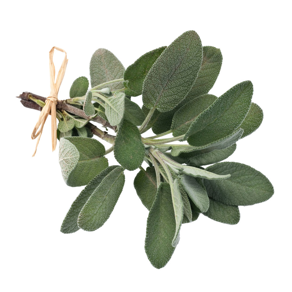 ingredient-sage.jpg