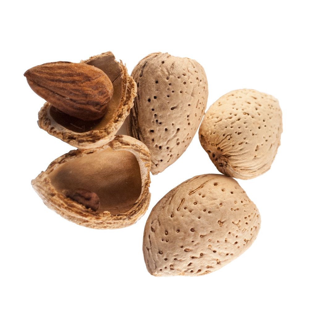 ingredient-almond-meal.jpg