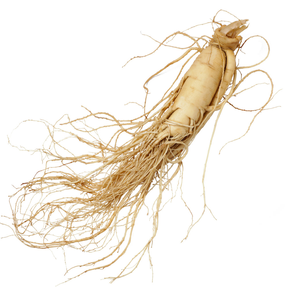 ingredient-ginseng.jpg