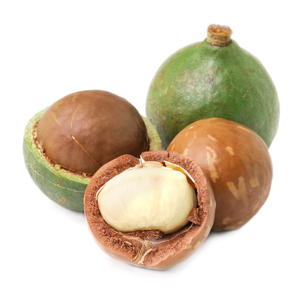 ingredient-macadamia.jpg