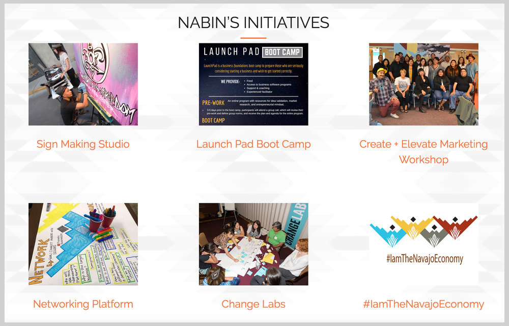 NABIN-Initiatives-high-res.jpg