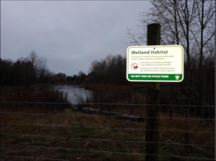 New fencing and signage to deter fishing.