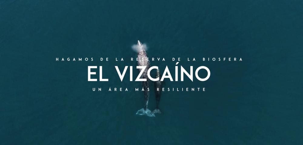 Faros de Esperanza Vizcaíno