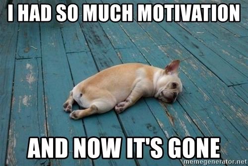 dog-motivation.jpg