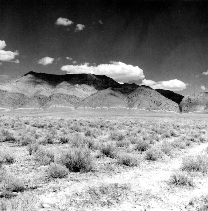 1915_Pleasant_Valley_earthquake_scarp.jpg