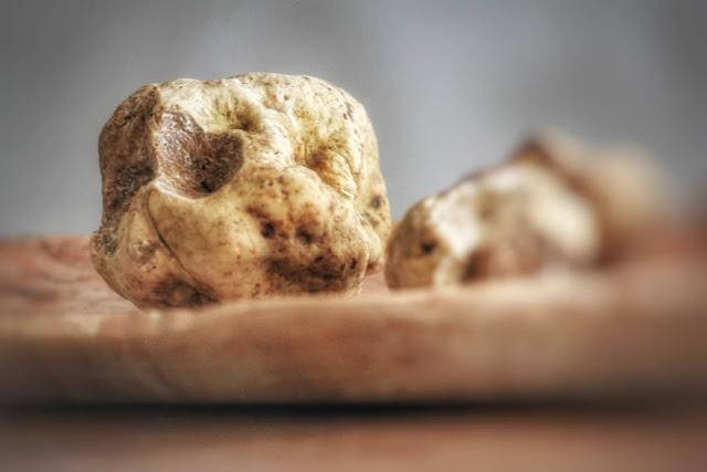 White truffles foraged in the wild in Greece. Photo courtesy of Eklekto.