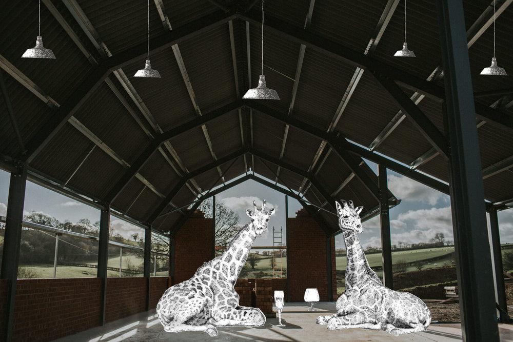 ShedMontage-Giraffes-1.jpg