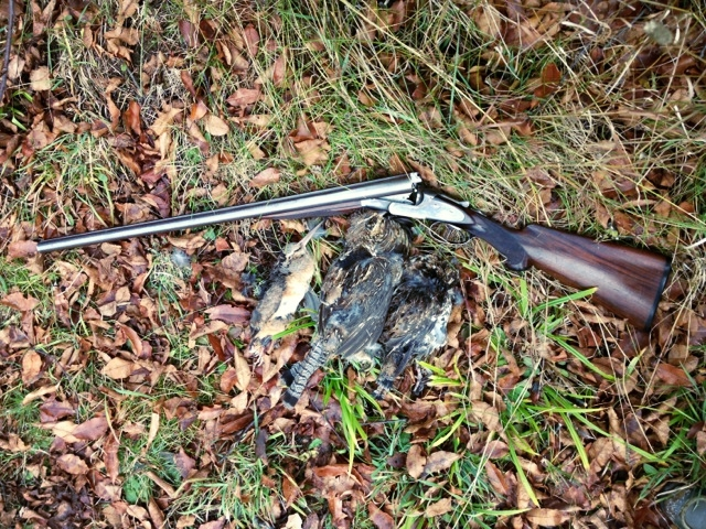 McCool Grouse and Woodcock Hunting