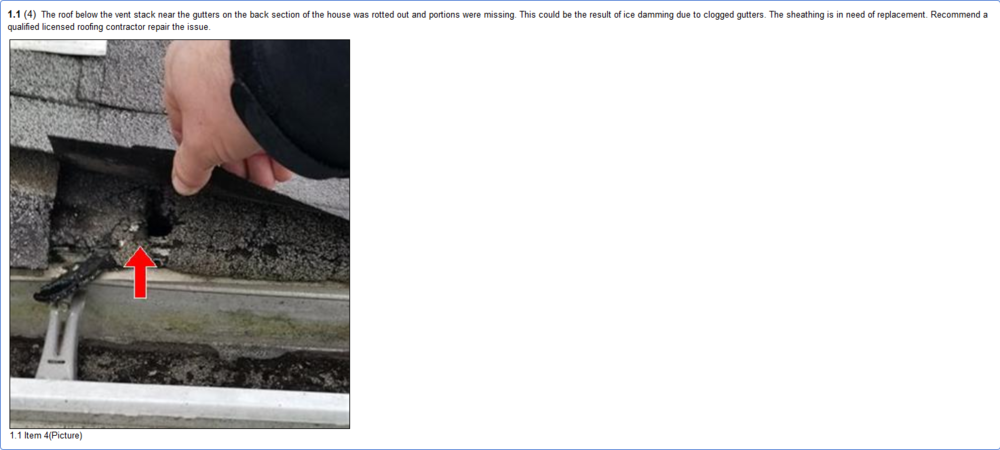 A sample of the roofing section of a report. All pictures have clear description and editing.