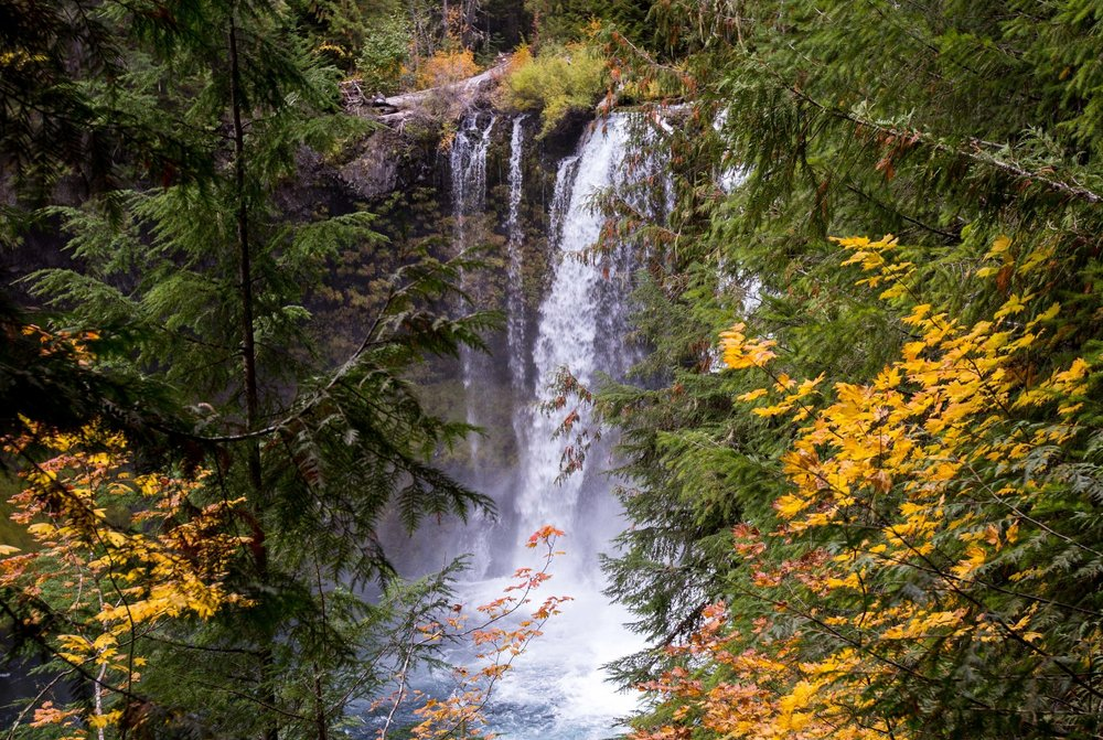 Koosah Falls Bend Photo Tours