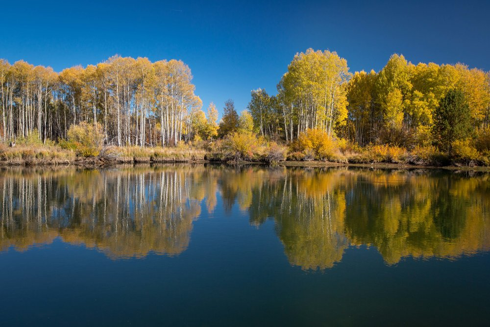 Deschutes river bend photo tours