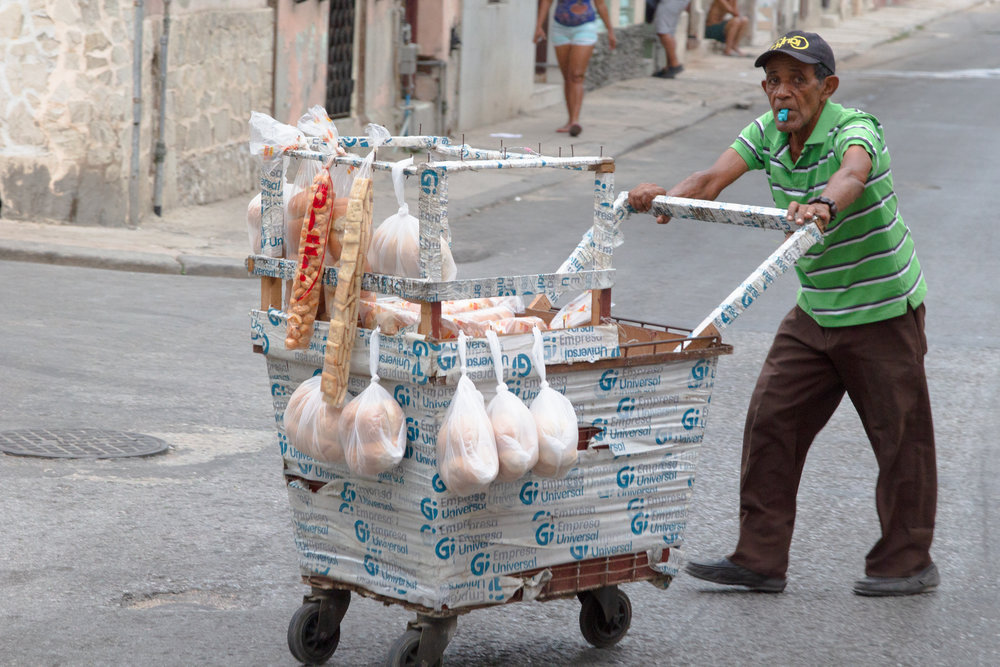 Traveling Havana Panadero