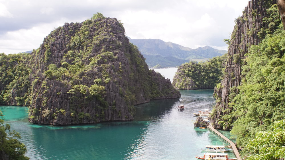 Tropical Flora atop Limestone Giants