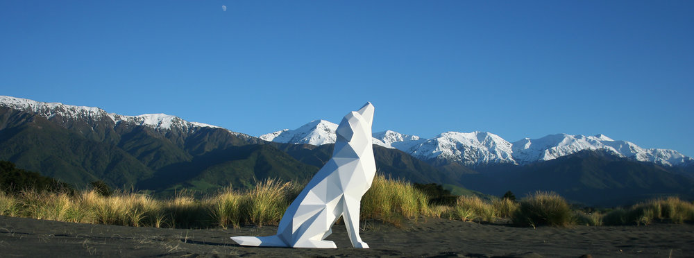 GoldenBoy by Ben Foster - Kaikoura coast