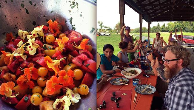 Sylvia Center - Huffington Post: Katchkie Farm, NY Sept. 2014