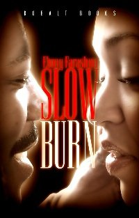 My first novel, Slow Burn is available at all major booksellers.