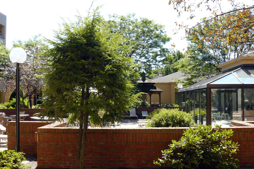 Marriott Courtyard, Rye, NY Rm43 $191.60