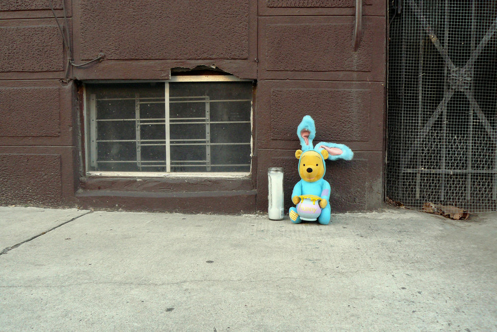 RIP Hunny-900 E. Tioga Street