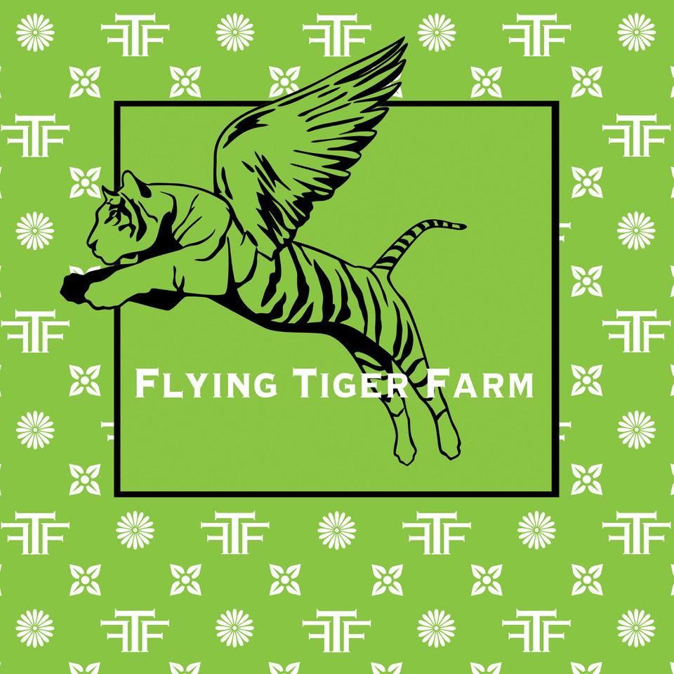 LogoTFT - Ari Steffen.jpeg
