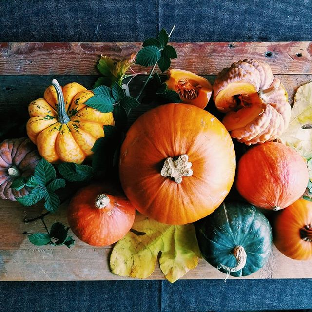 Happy Thanksgiving! #sweetrootchef #portlandpersonalchef #pdx #happyholidays #thanksgiving #instafood #foodporn