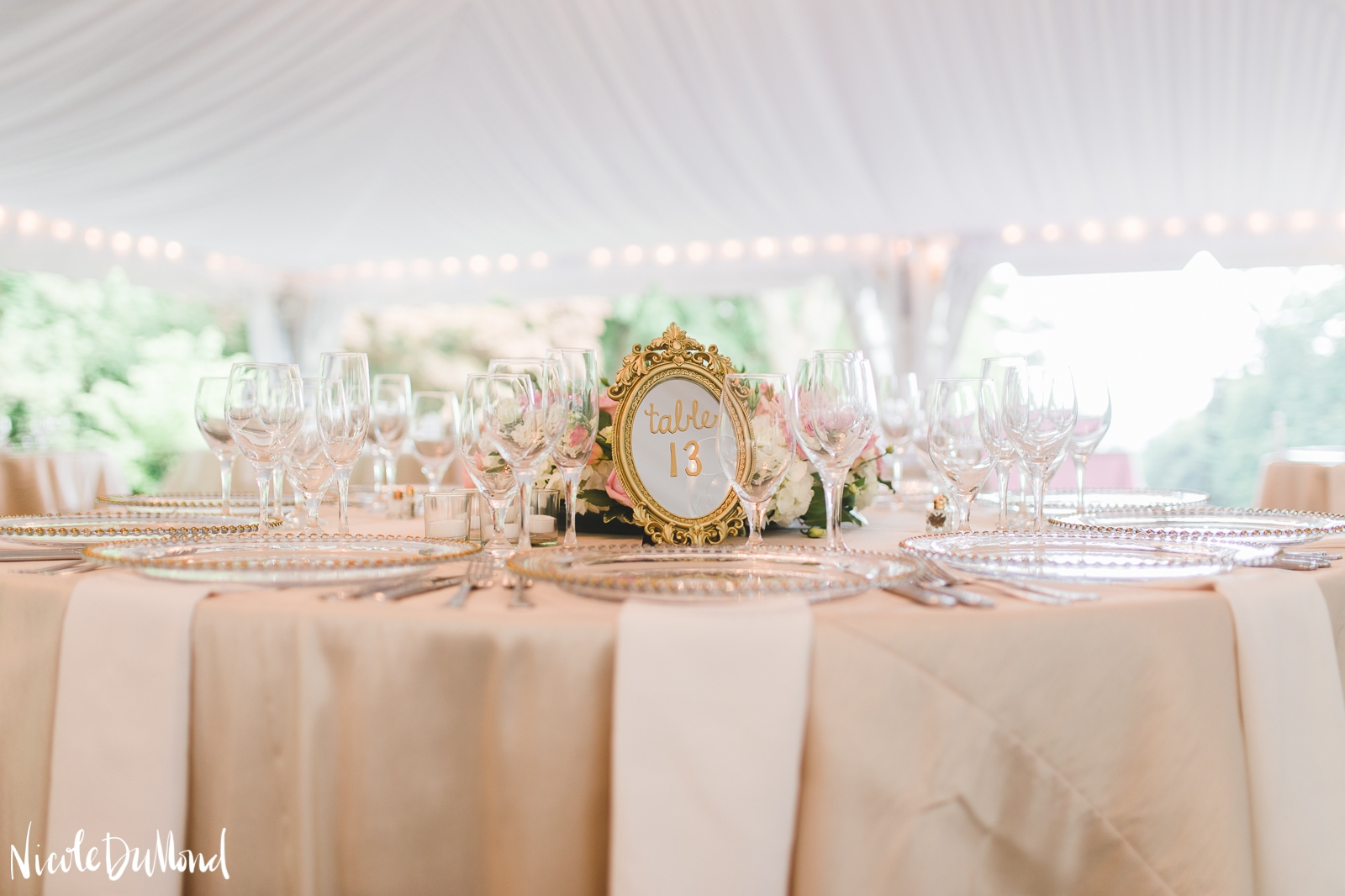 Strong Mansion tent wedding 72