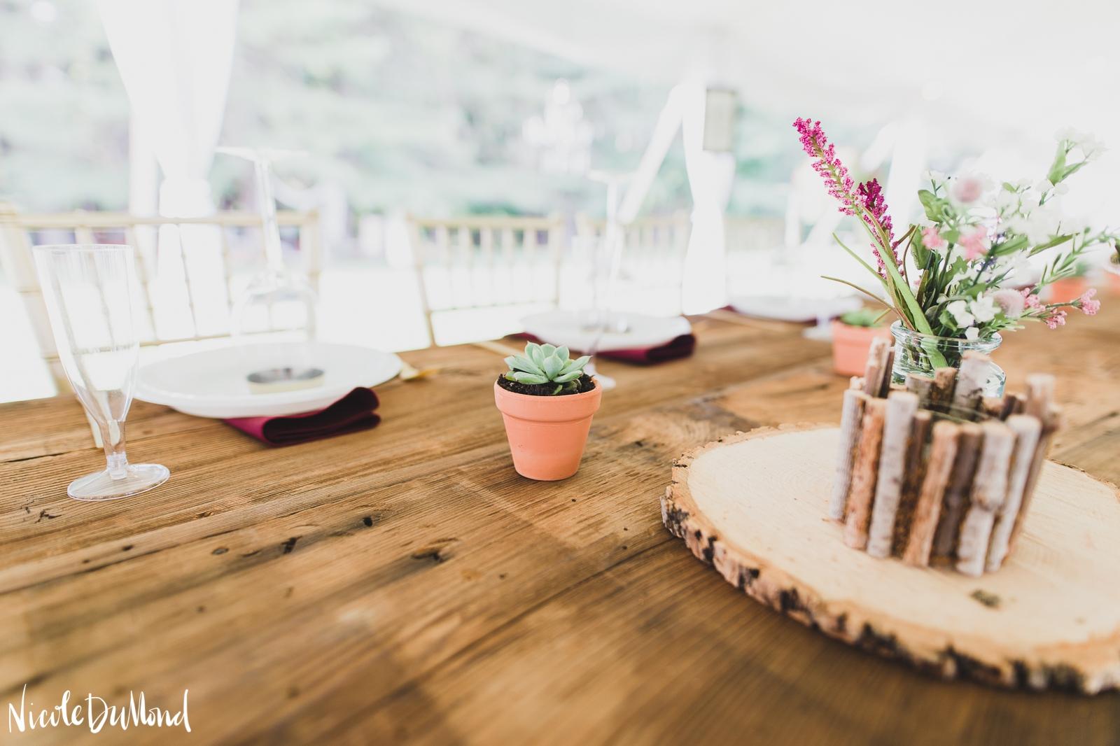 Backyard Wedding 9