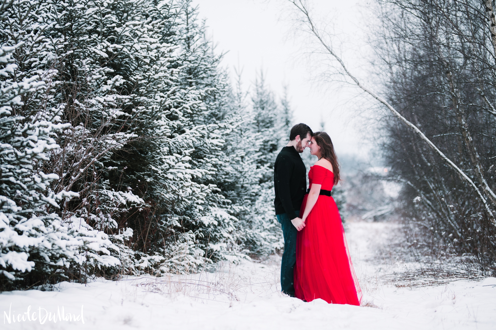 snowy-mountain-engagement 19