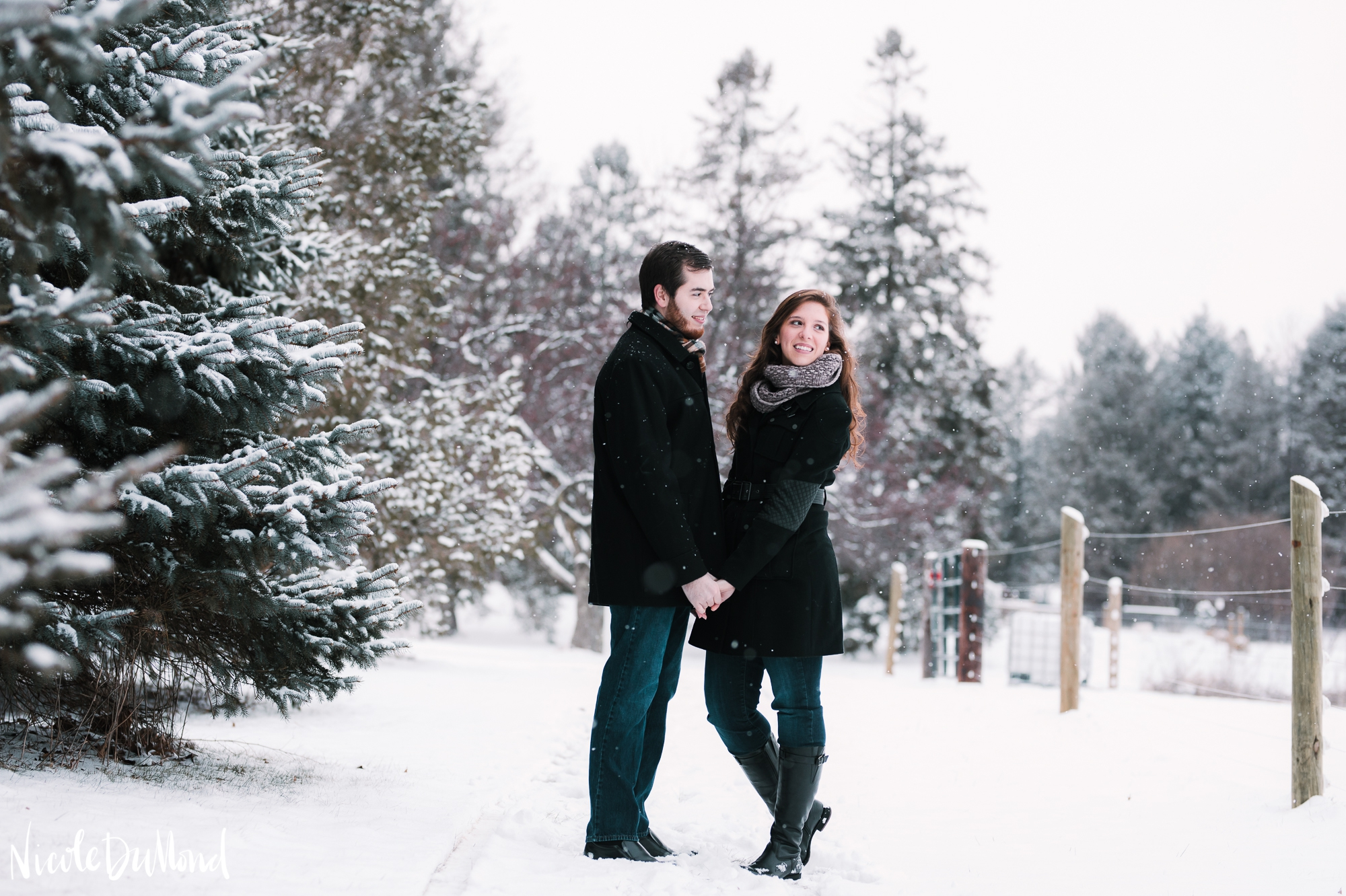 snowy-mountain-engagement 3