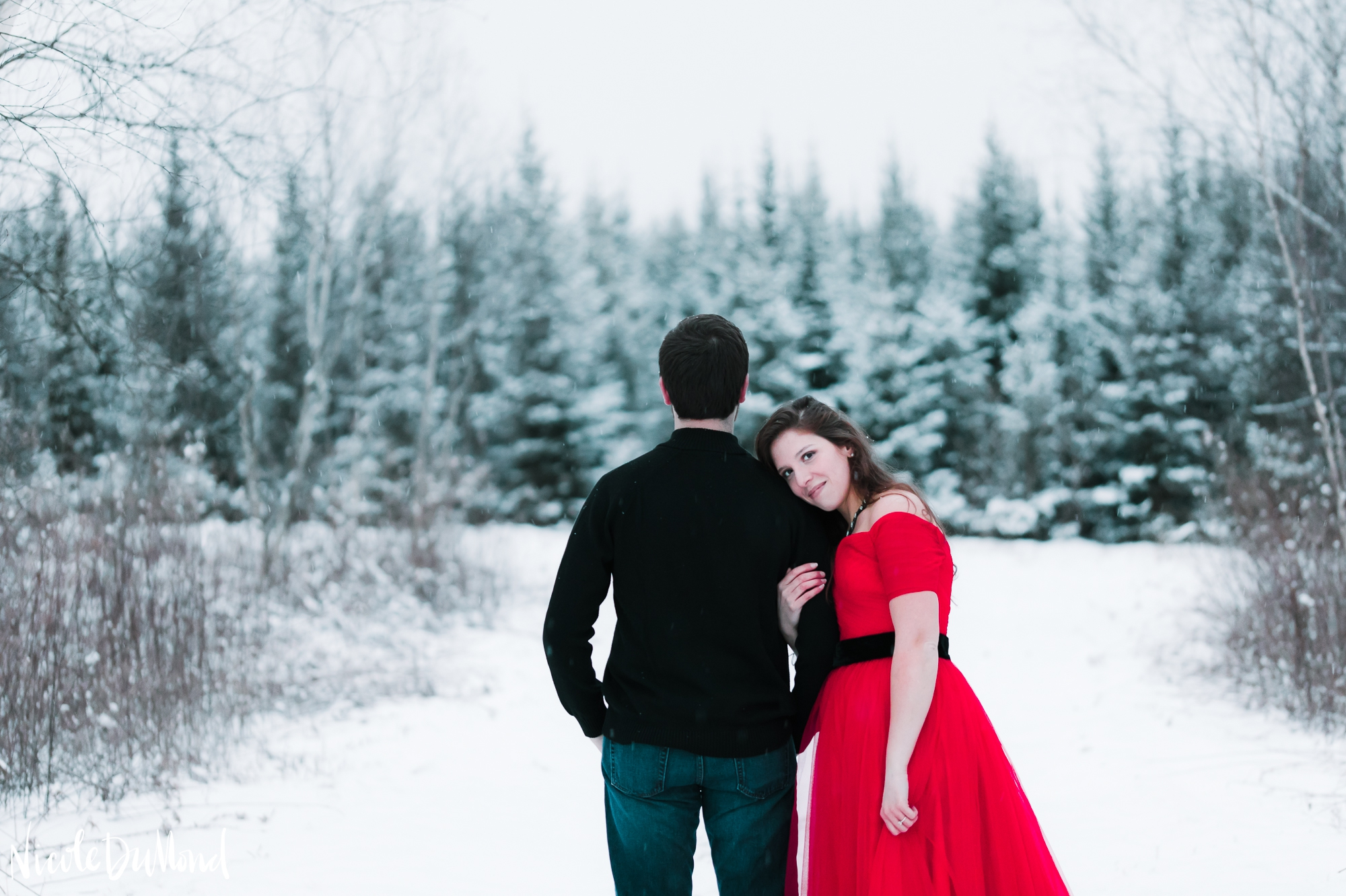 snowy-mountain-engagement 30