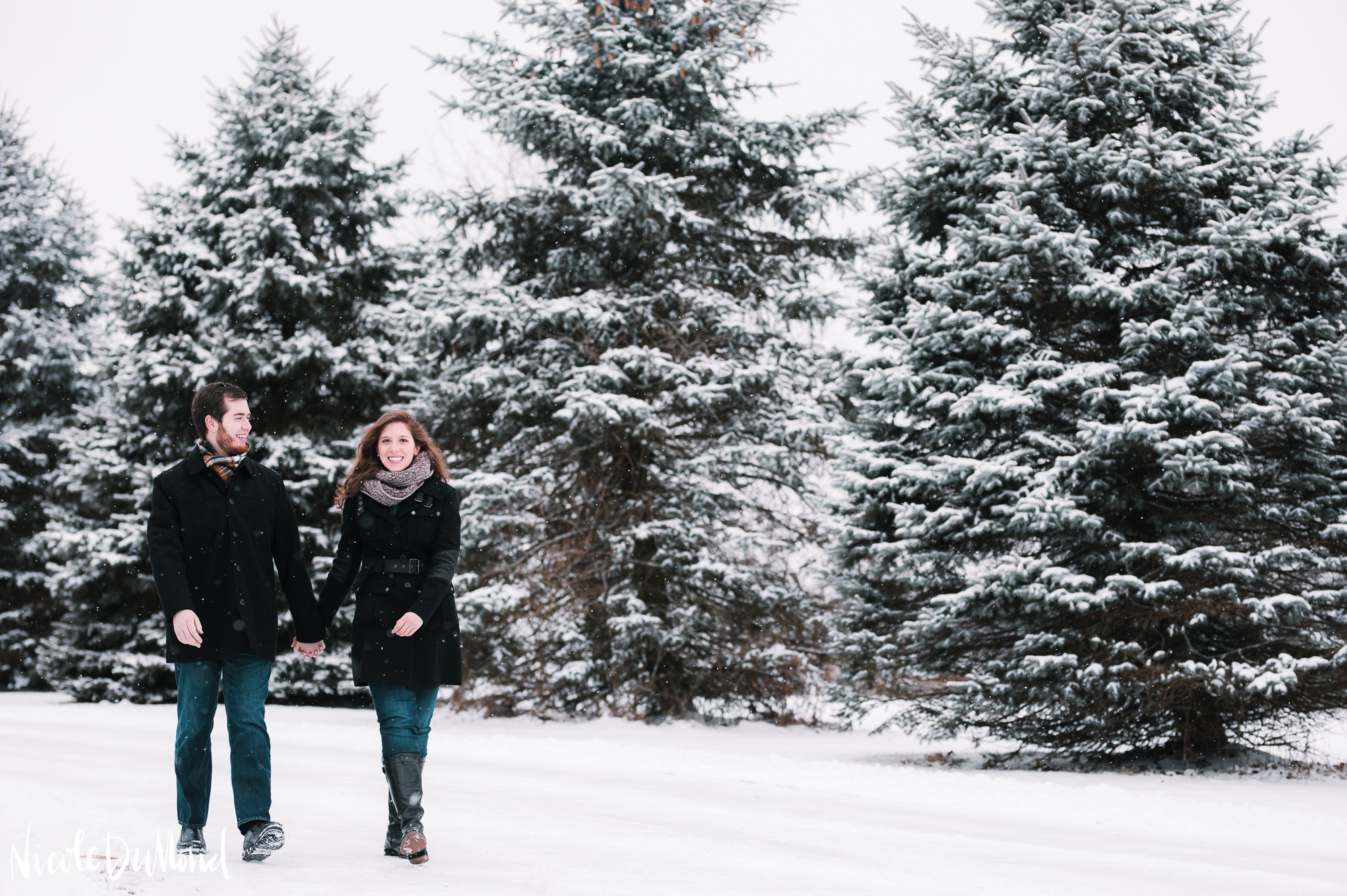 snowy-mountain-engagement 8