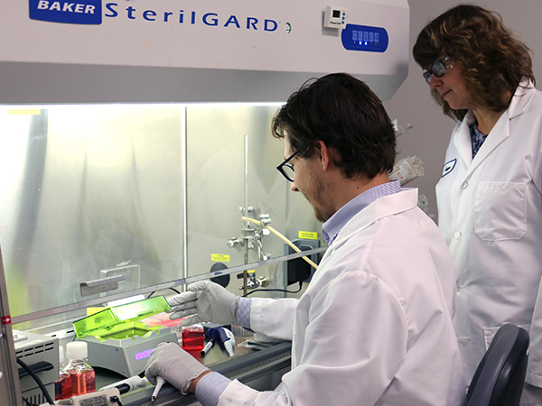 cypre-3d-cell-culture-services.jpg
