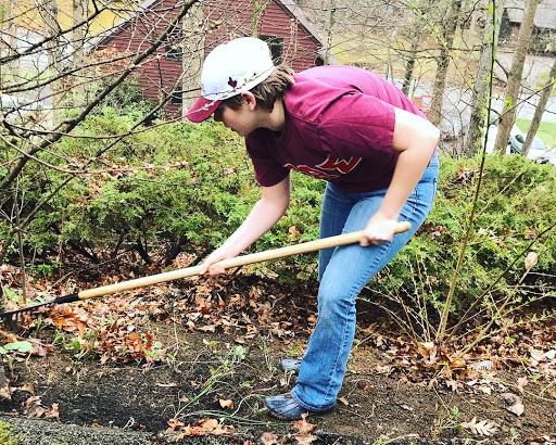 Alex Springer raking leaves; Source: Syd Hartwig