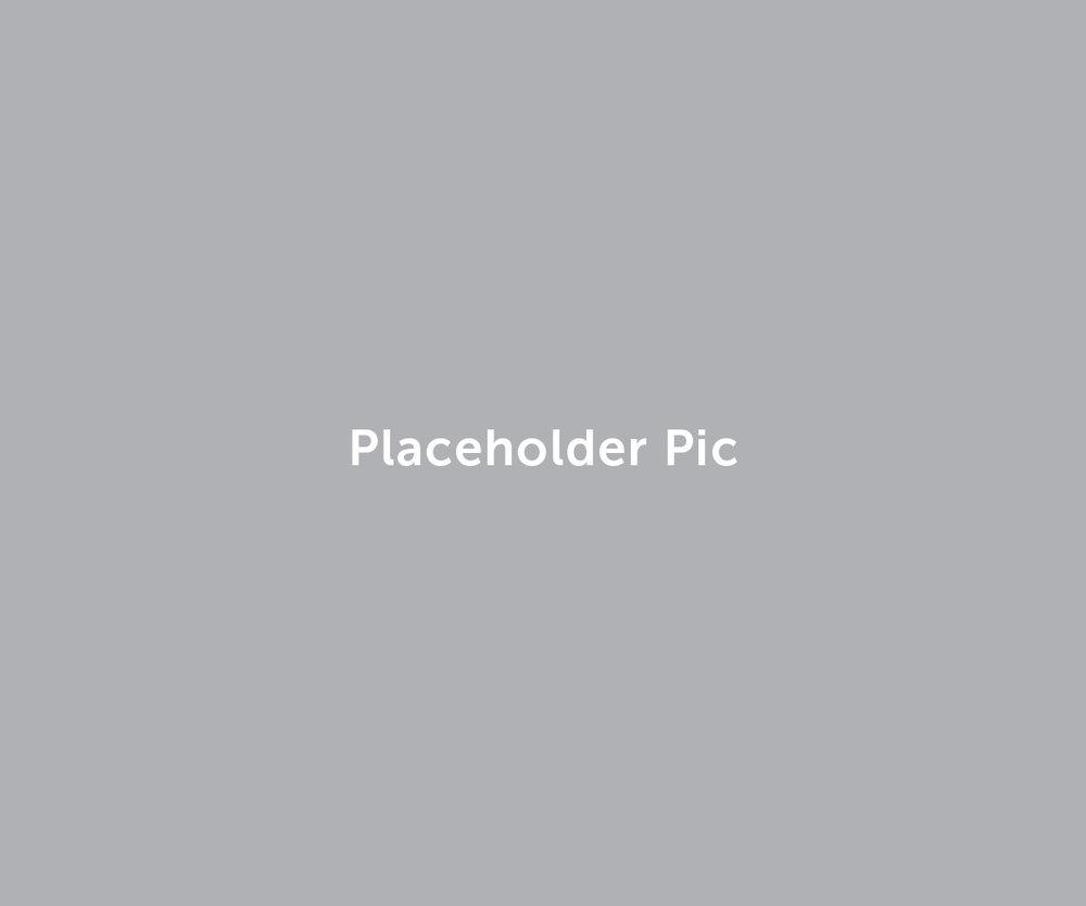 placeholder5.jpg