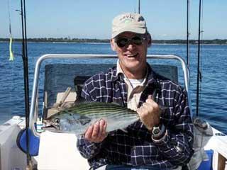 Green Bonita Caught fishing on Narragansett Bay