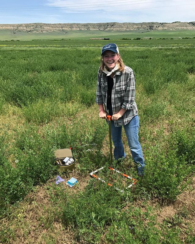 Good for the soil, good for the soul! Yale F&ES grad student and Quick Carbon Program Manager Jaclyn Kachelmeyer having fun building sampling protocols!