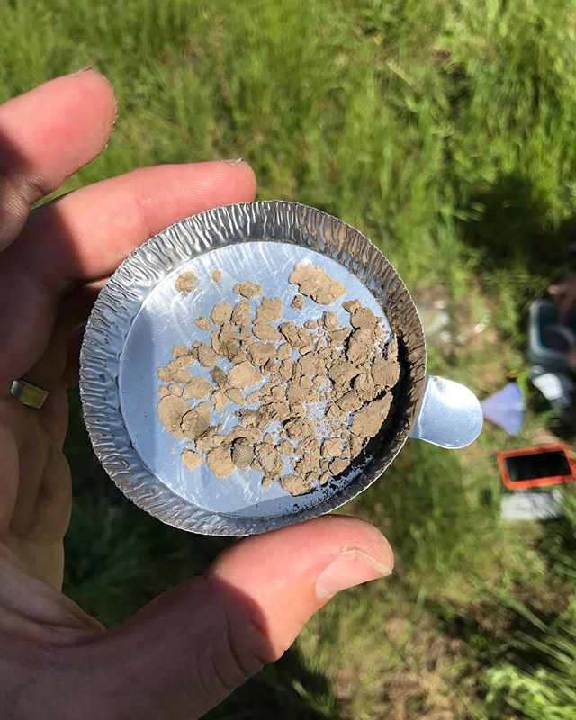 First sample of the summer field season!