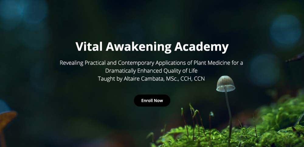 Vital Awakening Academy