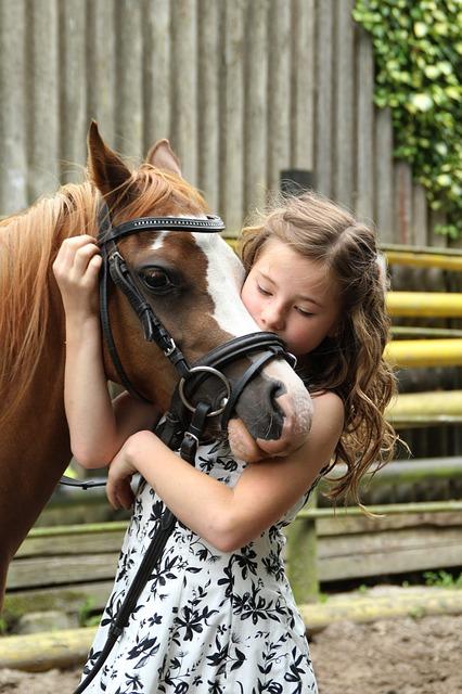 pony-2595144_640.jpg