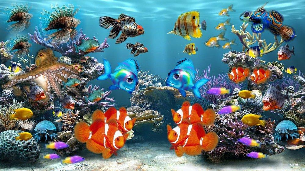 aquarium-284551_1280.jpg