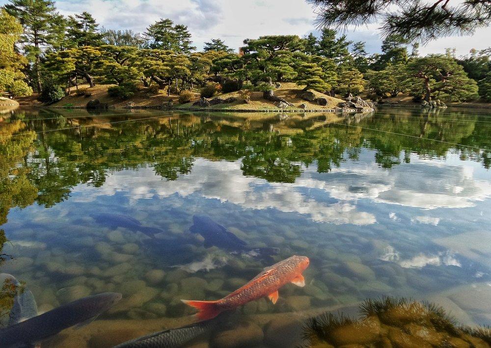 japan-2038902_1280.jpg