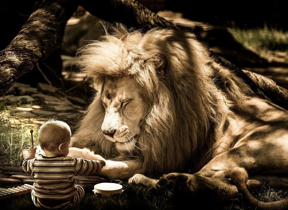 mammal-3128351_1280_lion and kid_MUSIC_pixabay.jpg