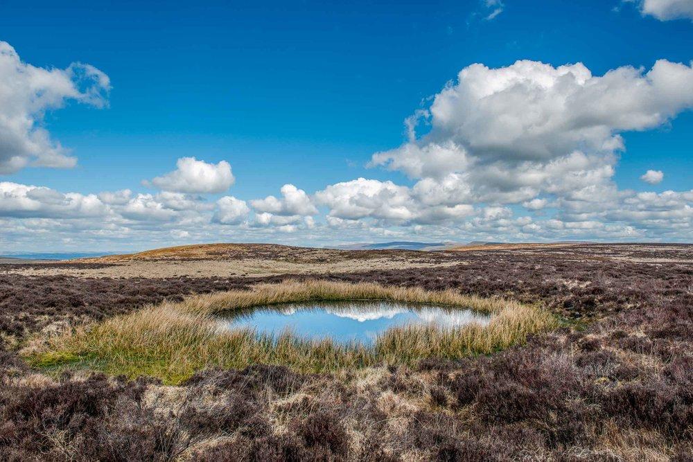 www.iaincrockart.com_landscape-0263.jpg