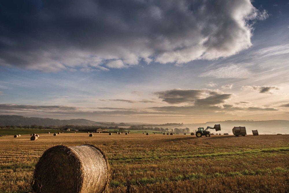 www.iaincrockart.com_landscape-AGRII_Outperformace_04_CMYK_HR-2.jpg
