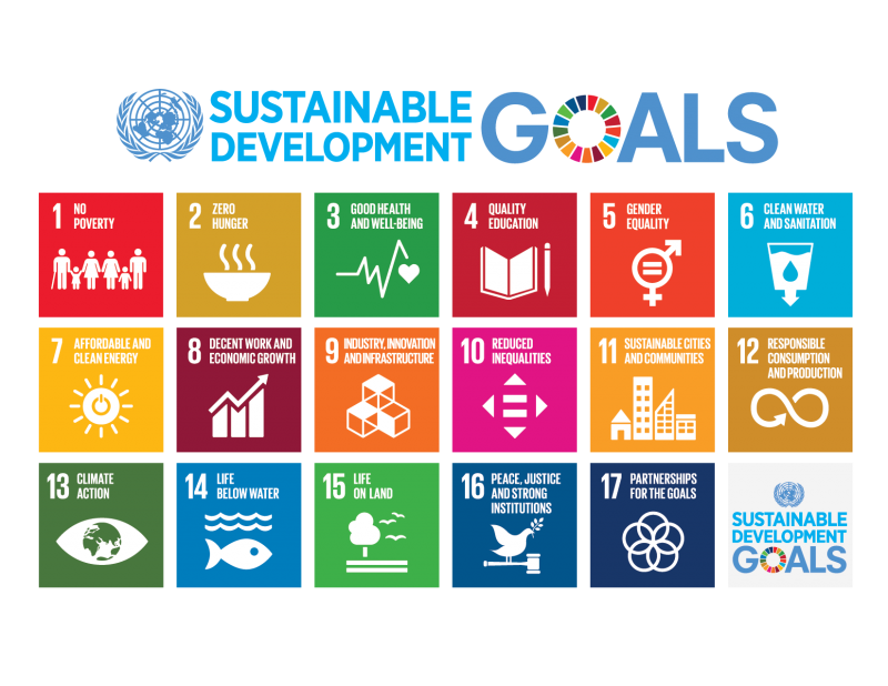 Sustainable Development Goals, United Nations