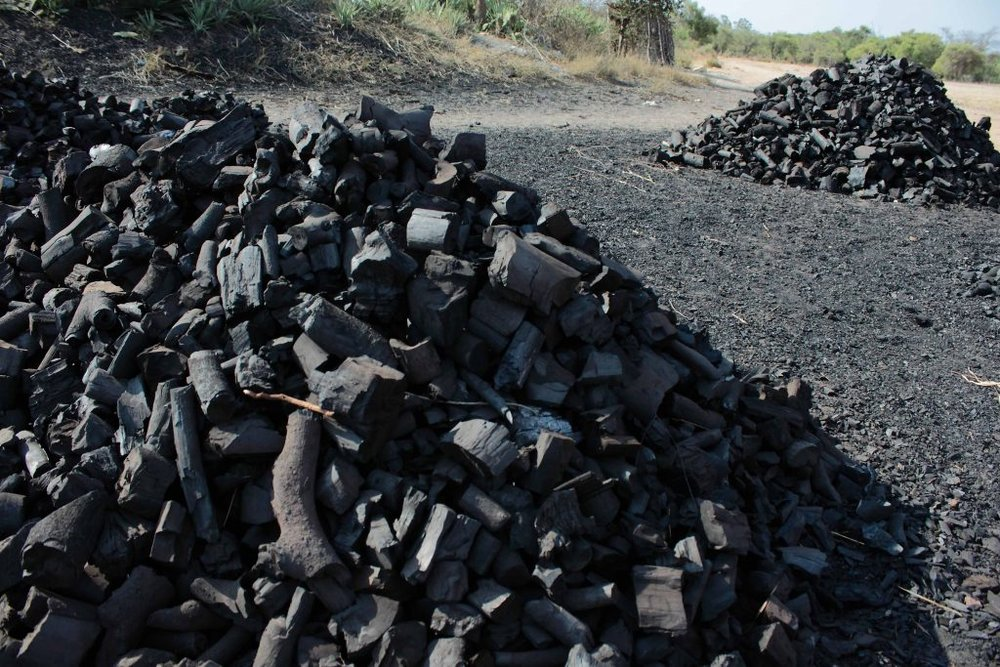 Mounds of charcoal awaiting distribution to urban markets