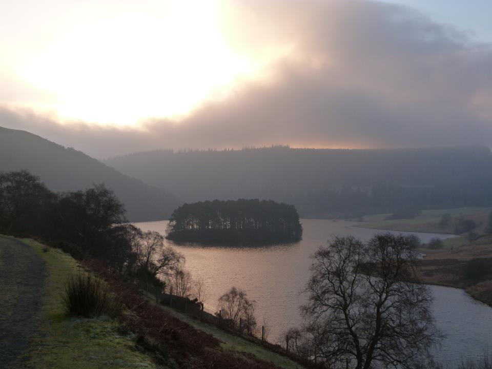 Penygarreg Island - morning.jpg