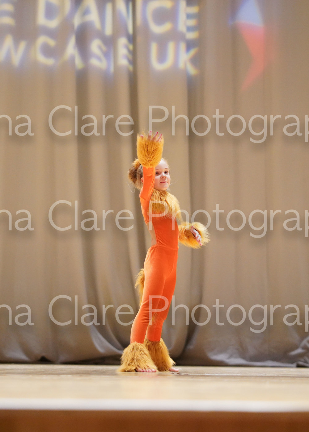 Lion King-18.jpg
