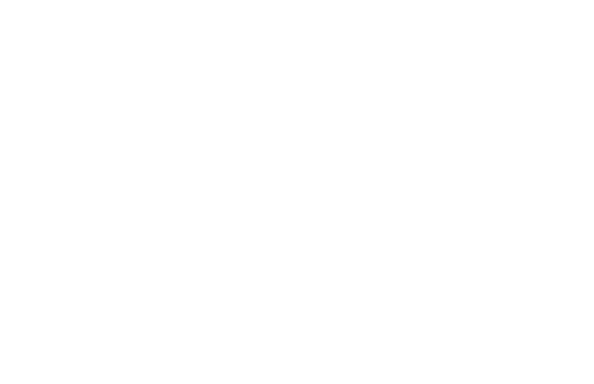 live view.png