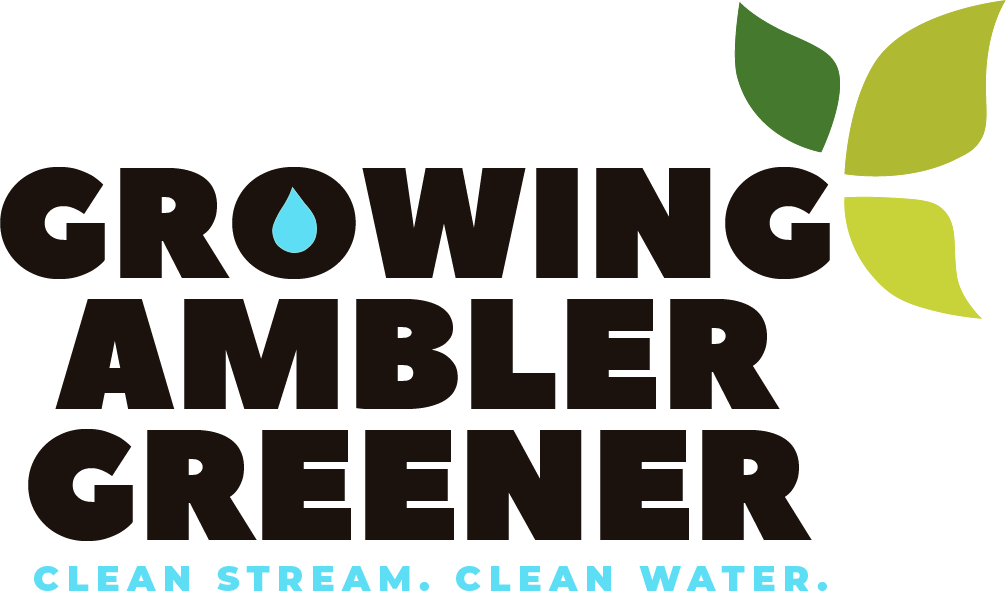 Growing Ambler Greener