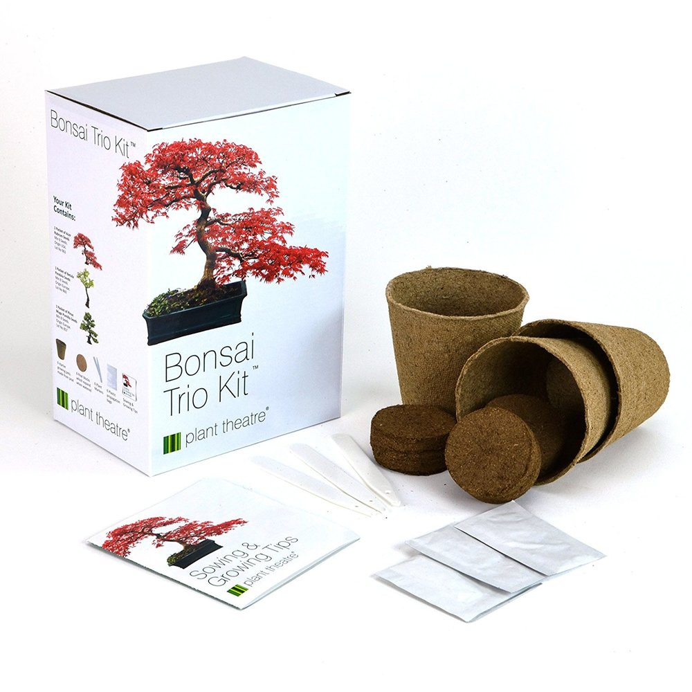 bonsai kit.jpg